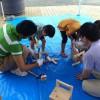 夏休みの工作を低学年の子と作った記録~粘土がおすすめ!簡単!~