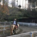 小田原のわんぱくランドでポニーに乗馬!小さいお子様でもOK